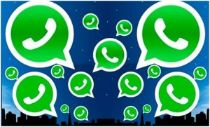 whatsapp UYP